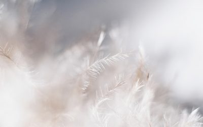 Wednesday Worldly Wisdom – message from spirit. Today – what lies beyond the pain of baby loss and fertility struggles?