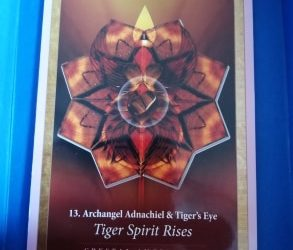 Magical Monday – distance healing and energy reading for the week – Truth over Fear. Tiger Spirit Rising